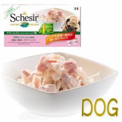 最短賞味2023.1・シシア 犬 マルチパック(チキン&ラム)85g×4缶 scc606ウェット成犬用一般食ドッグフード Schesir正規品