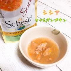 SALE/最短賞味2022.6・シシア 猫 スープ(ツナ&パンプキン)85g scc674パウチ 成猫用ウェット一般食 キャットフード Schesir 正規品
