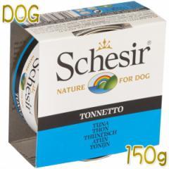 最短賞味2022.12・シシア 犬(ツナ)150g缶 scc681成犬用ウェットドッグフード Schesir 正規品