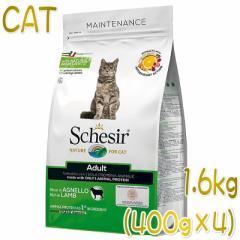 最短賞味2021.11.7・シシア 猫 アダルト リッチイン ラム 1.6kg(400g×4)scc708p成猫用キャットフードSchesir正規品