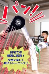ハンドミットダブル2個セット 空手 テコンドー キックボクシング練習 パンチングミット キックミット