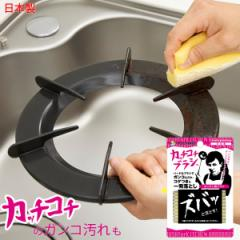 そうじの神様 カッチコチブラシ キッチン用[KBセーレン]コンロ 五徳 鍋 洗いやすい 手になじむ 鉄製フライパン 魚焼き網 網