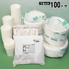 エコ食器セット100人分(使い捨て食器 紙皿 紙食器)