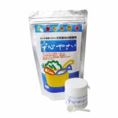 安心やさい 300g(100g×3袋)保存ボトル&計量スプーンセット