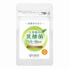 ラクア 大草原の乳酸菌NS-Max(36粒)