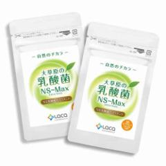 ラクア 大草原の乳酸菌NS-Max(36粒)×2セット