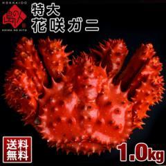 ≪真っ赤に輝く幻の蟹≫特大 花咲蟹 花咲ガニ 1.0kg 最高品質 冷凍 市場に出回らない大きさで食べ応え抜群!味の濃厚さは蟹の中で1番