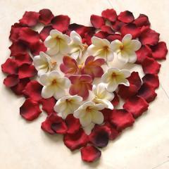 ローズの花びら メール便対応可    造花 バラ 赤 リアル ウェルカムフラワー ウェディング 結婚式 フラワーシャワー バリ雑貨 インテリア