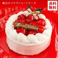 ケーキ クリスマスケーキ 送料無料 純白のいちご ショートケーキ 5号 イチゴ お取り寄せ ギフト プレゼント 2019 予約