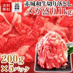 お歳暮 ギフト 赤城和牛切り落としメガ盛り1kg 200g×5パック 【冷凍】