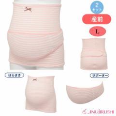 犬印本舗)ふんわりパイルボーダー妊婦帯(ピンク)【L】[産前用 腹帯 マタニティインナー 妊婦帯 ささえ帯 マタニティ インナー マタニ