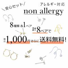 New アレルギー対応ピアスパーツ スターターセット お試しセット ピアス金具 樹脂ポストピアス チタンポストピアス ステンレス