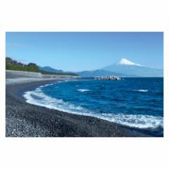 富士山ポストカード 三保の松原から富士山を望む (YN-001) 当店オリジナル写真絵はがき