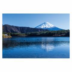 富士山ポストカード 西湖から富士山を望む (YN-004) 当店オリジナル写真絵はがき