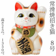 常滑焼 招き猫 8号小判白猫貯金箱 左手上げ (143-66-86) 愛知県の工芸品 Tokoname-yaki Lucky cat