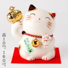 金小槌猫貯金箱 (K3568) Piggy bank of beckoning cat