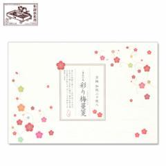 【一筆箋】一筆此の先箋 彩り梅蔓箋 (IC-004) 同柄20枚綴 和詩倶楽部 Mini letter paper, Washi-club