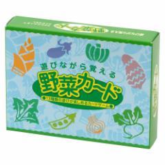 奥野かるた店 野菜カード 野菜への興味と知識を育むカードゲーム 年齢のめやす3歳位から Vegetable illustration card game