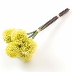 いろはに花 手毬菊 ホワイト 気軽に飾る、季節を楽しむ日本らしい造花 Artificial flower