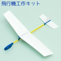 自分で色付けした飛行機が大空へ! グライダー飛行機 フライングホーク 白地工作用