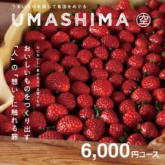 【送料無料】カタログギフト 「うましま(UMASHIMA)」【空コース:クロネコDM便】【お肉 肉グルメ 成人式内祝い 父の日・内祝い・出産内祝