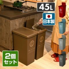 2個セット ゴミ箱 45リットル ふた付き おしゃれ スリム  スライドペール  45L フタ付き ごみ箱 ダストボックス 分別 ペール 2個組   平