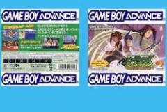 【新品】【GBA】シャーマンキングカードゲーム 超・占事略決2[お取寄せ品]