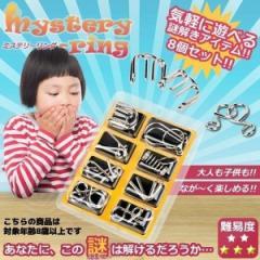 知恵の輪 遊び 玩具 知育 子供 大人 教育 勉強 楽しい 夢中 謎解きBT004-8