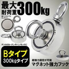 マグネットフック Bタイプ 300kgタイプ 磁石 フック取外可能 超強力 垂直耐荷重 SUGOMAG-B-300