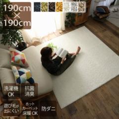 ラグ 洗える シャギー ラグマット 190×190cm 2畳 ポリエステル 日本製 国産 白 黄色 灰色 茶色 緑 紺 洗濯機 防ダニ 抗菌 防臭 遊び毛が