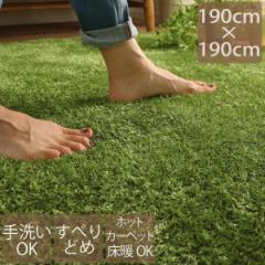 ラグ 洗える ラグマット 190×190cm 2畳 滑り止め 芝生 風 グリーン 緑 可愛い かわいい 手洗い シャギー ふわふわ 無地 屋内 室内 マッ