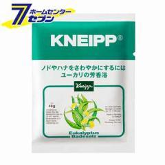 クナイプ バスソルト ユーカリの香り (40g)クナイプ [【医薬部外品】 KNEIPP 入浴剤 癒し スパ用品 アロマバス]