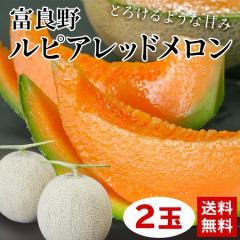 メロン 詰め合わせ ギフト ギフトランキング 送料無料 富良野ルピアレッドメロン 2玉 2L 秀品 果物 フルーツ