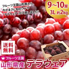 果物 ぶどう 詰め合わせ ギフトランキング 送料無料 山形県産 デラウェア 9〜10房 3L 約2kg 種なし 葡萄(gc)