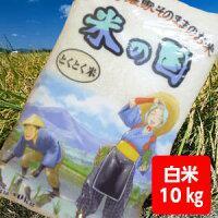 【送料無料】山形とくとく米10kg【沖縄別途1000円加算】