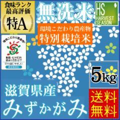 【送料無料】 無洗米 29年産 特別栽培米 滋賀県産 みずかがみ5kg【北海道沖縄へは別途送料830円】