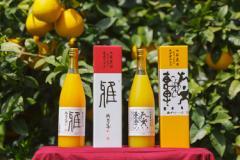 【通販 ギフト 愛媛県】NADAフレッシュジュース2本セット