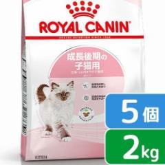 ロイヤルカナン 猫用 キャットフード 猫 キトン 成長後期の子猫用 2kg×5袋 3182550702423 沖縄別途送料 ジッ