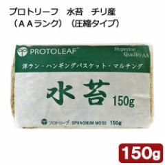 プロトリーフ 水苔 チリ産(AAランク)(圧縮タイプ) 150g