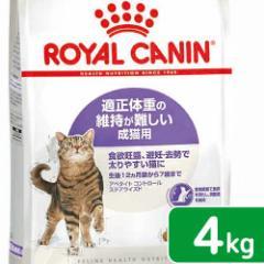 ロイヤルカナン 猫用 キャットフード 猫 アペタイト コントロール ステアライズド 成猫用 4kg 3182550805278