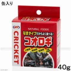 NPF コオロギ(缶入り) 40g 両生類・爬虫類 ハリネズミ フード 餌 エサ 缶詰