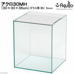 30cm水槽ミディアムハイタイプ(単体)アクロ30MH(30×30×36cm)オールガラス水槽Aqullo アクアリウム用品 お