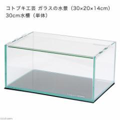 コトブキ工芸 kotobuki ガラスの水景(30×20×14cm) 30cm水槽(単体) お一人様2点限り