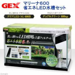 GEX マリーナ600 LEDセット 水槽セット お一人様1点限り 沖縄別途送料