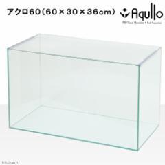 60cm水槽(単体)アクロ60N(60×30×36cm)オールガラス水槽 Aqullo アクアリウム用品 お一人様1点限り (ハ