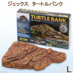 GEX エキゾテラ タートルバンク L 亀 浮島