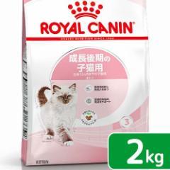 ロイヤルカナン 猫用 キャットフード 猫 キトン 成長後期の子猫用 2kg 3182550702423 お一人様5点限り 【KN