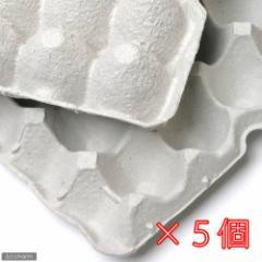 紙製卵トレー 45×29cm 5枚セット 昆虫 コオロギ 飼育 ハウス ケース お一人様6点限り