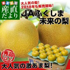 送料無料 福島県より産地直送 JAふくしま未来の梨 5キロ(10玉から16玉) 産直だより