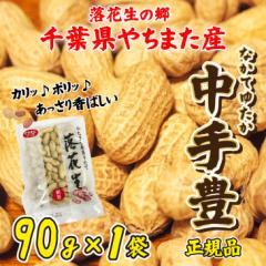 国内流通10%未満 千葉県やちまた産 煎りたて 殻付き落花生 中手豊品種 90g×1袋 新豆 ピーナッツ 全国送料無料